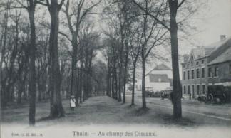 Champ-des-oiseaux-Thuin