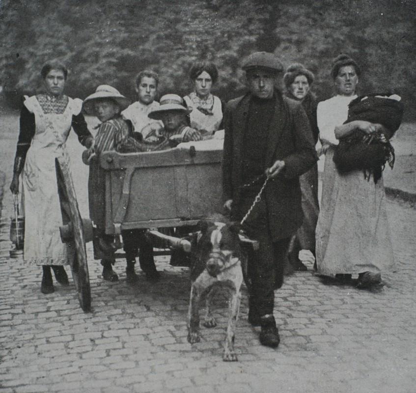 Exode-aout-1914-belgique